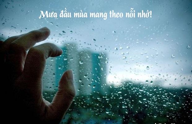 Status về cơn mưa đầu mùa khiến trái tim ai thổn thức những hoài niệm