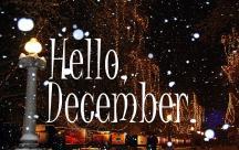 Stt hay về đầu tháng 12 đã đến, em còn chần chừ gì mà chưa nói yêu thương ?