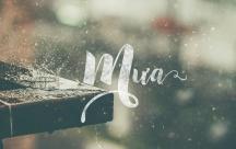 Stt mưa rơi khiến lòng ta miên man trong nỗi buồn tê tái sầu thẳm
