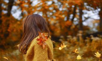 Những stt ý nghĩa về mùa thu chất chứa tâm trạng con người