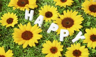 STT hạnh phúc là những điều giản dị ở quanh ta
