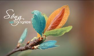 Status cuộc sống Học cách sống, tức là học cách tự do, và tự do tức là chấp nhận việc gì phải đến sẽ đến !