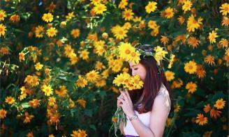 Những Stt hay về hoa Dã Qùy và tình yêu thủy chung trên miền đất nhớ