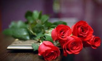 Qà tặng 8/3 giúp các cặp đôi yêu xa hâm nóng tình yêu