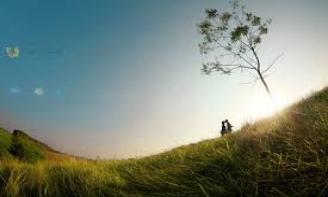 Stt cảm xúc lý trí buông xuôi một nỗi buồn, một người, một tình yêu