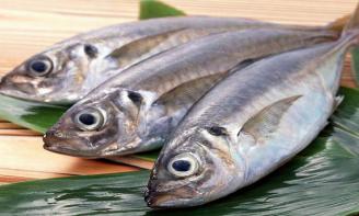 17 mẹo xử lý và chế biến cá rất hay các bà nội trợ cần biết