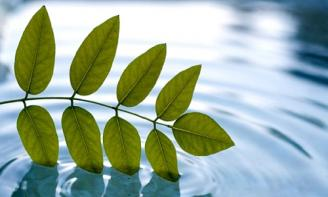 Tổng hợp những stt đáng suy ngẫm dành cho bạn về  cuộc đời nhiều thử thách