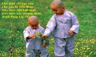 Những stt ý nghĩa mang lời Phật dạy về bạn tốt, bạn xấu trong cuộc sống