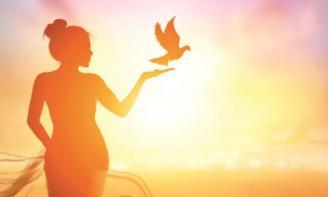Status tâm sự giữa cô đơn và tự do em lựa chọn điều gì?