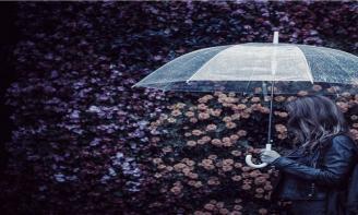 Status suy ngẫm Nhiều khi cuộc sống khiến bạn cảm thấy như thể chỉ có một mình bạn đứng dưới cơn mưa