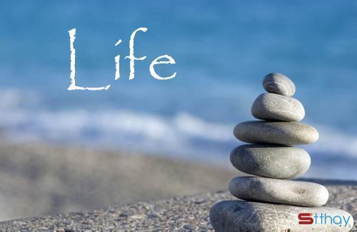 Tổng hợp những stt về bản chất thật sự, nghịch lý của cuộc đời