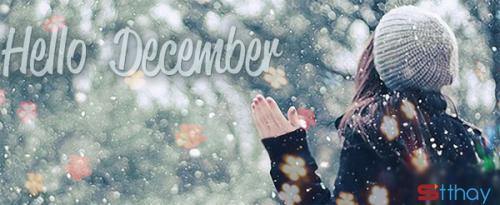 Những status sâu lắng nhất về tháng 12 ấm áp yêu thương
